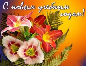 Успехов в новом учебном году!!!